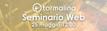 Webinar-Tormalina-370x107